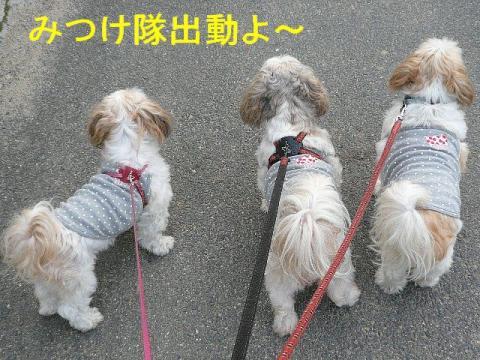 oyako_2080928_1