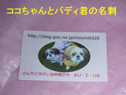present_20081008_3
