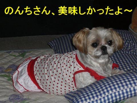 bibi_20081008_1