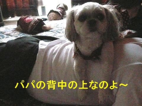 mint_20081011_12