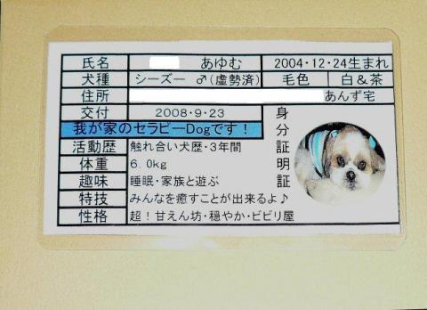 card_20081027_1