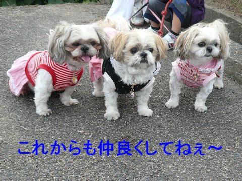 oyako_20081113_1