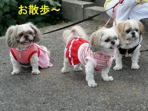 oyako_20081103_3