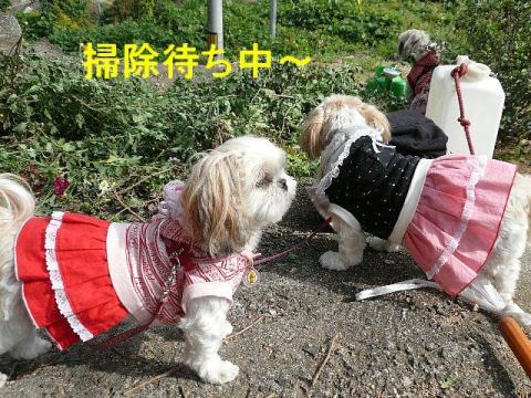 oyako_20081106_1