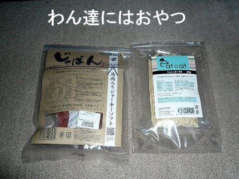 present_20081128_2