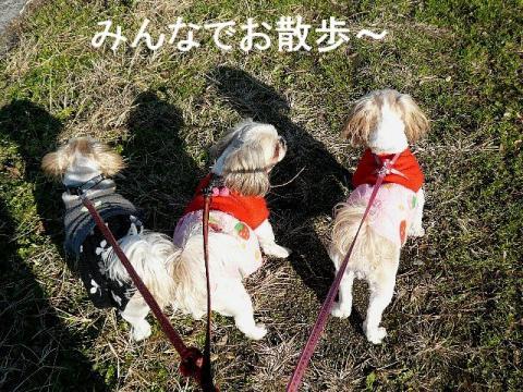 oyako_20081207_1