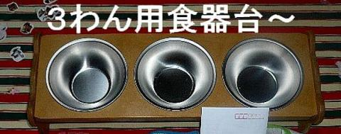 present_20081212_1