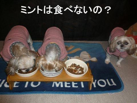 oyako_20081212_1