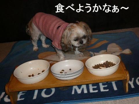 mint_20081212_4