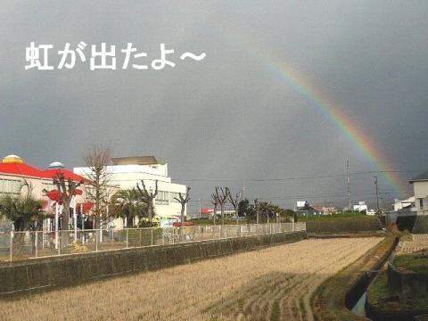 niji_20081214_1