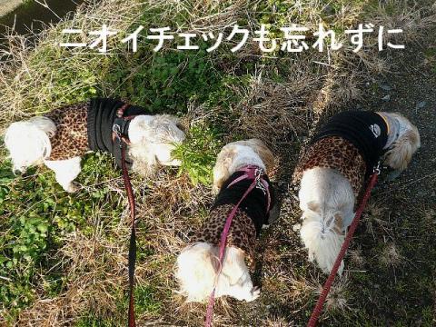 oyako_20081214_1