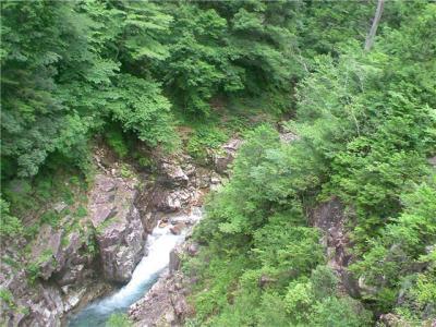 川浦渓谷上流