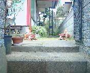 20060101113426.jpg