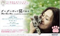 ★★★★:猫と小泉はたしかにかわいいんだけど…