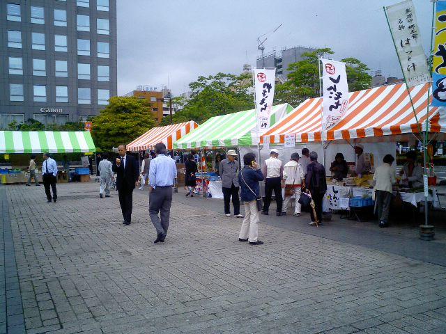 hoyatama1.jpg