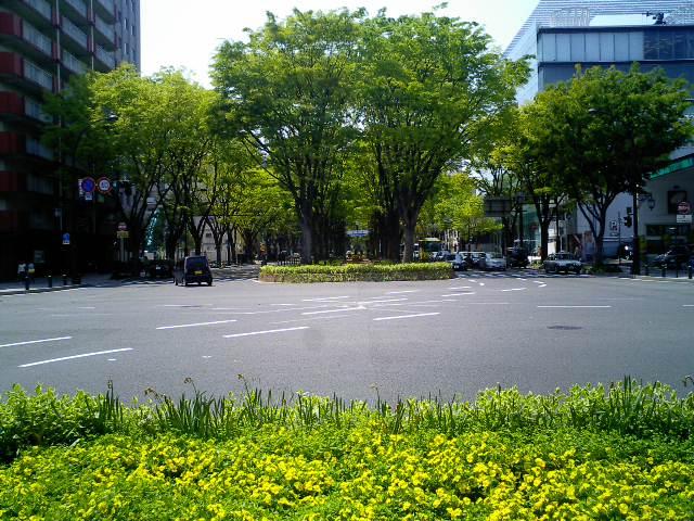 sinryoku2.jpg