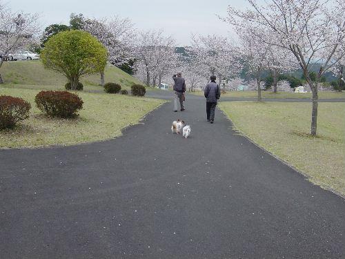 08.1.8yoshimi 004