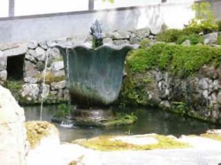 禅堂前の池