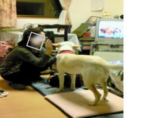 snap_blogfuri_200932121118.jpg