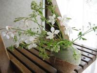 flowerbase5.jpg
