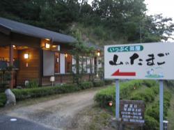 yamanotamago.jpg