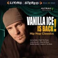 Vanilla_Ice_200810_01.jpg