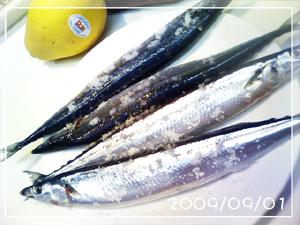 秋刀魚(生)