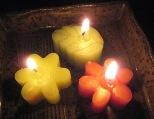 2008花の灯