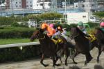 姫路レース