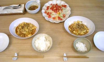 麻婆豆腐とサラダ 2008.10.31