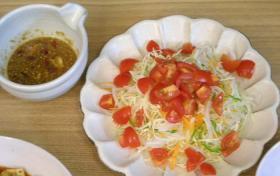 トマトとタマネギのサラダ 中華ドレッシング 2008.10.31