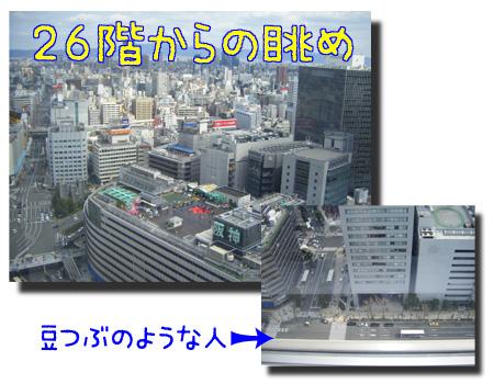 08_0403_03.jpg