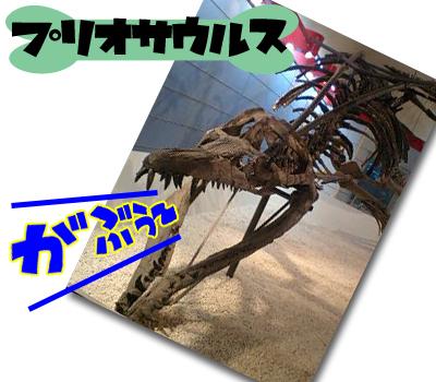 08_0804_10.jpg