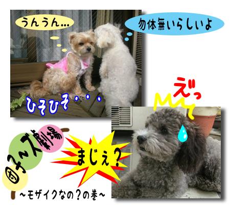 dango_02.jpg