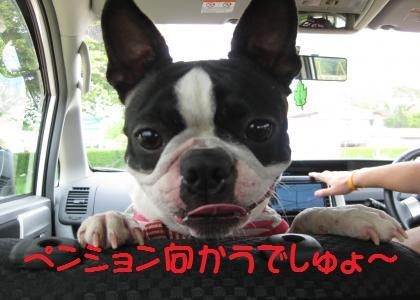 IMG_1073_convert_20090507102439_nasu.jpg