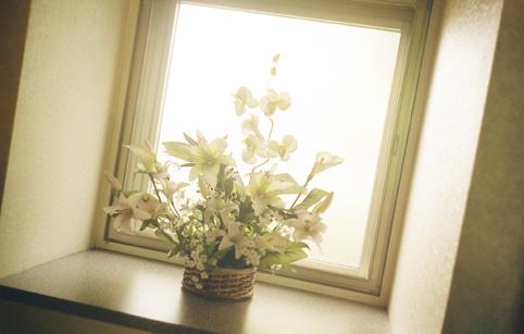 61花・植物