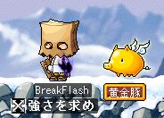 BreakFlash