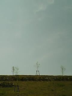 20061019143328