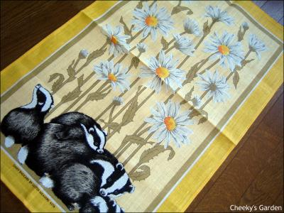 4216_daisy_badgers.jpg