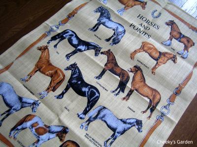 4962_horses_and_ponies.jpg