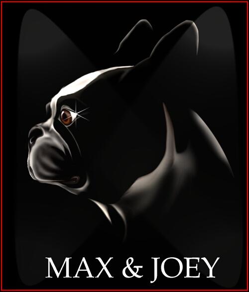 MAX94-2.jpg