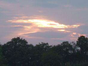10月のみかん園の夕日