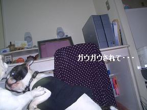 20050517140251.jpg