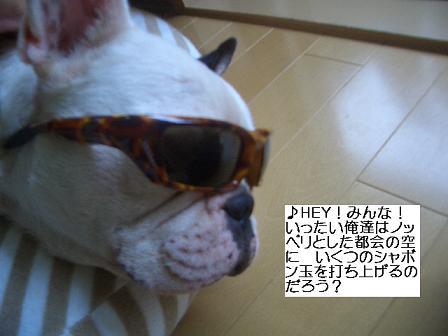 20050731095507.jpg