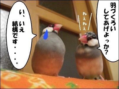 ありがた迷惑(^_^;)