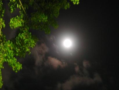 十五夜のあとの月