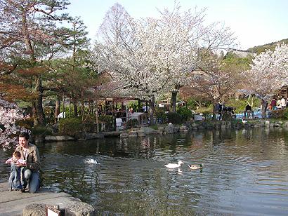 池と可愛い過ぎるベイビー