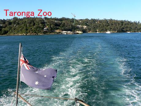 Taronga Zoo Ferry