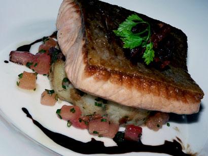 tasmanian salmon