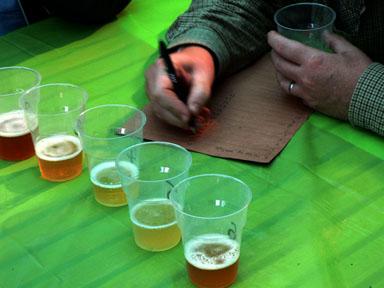 beer testing2